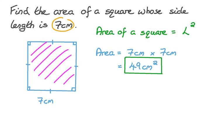 Finding the Area of a Square Given Its Side Length