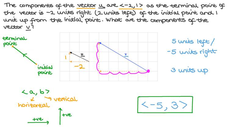 The Components of a Vector on a Grid