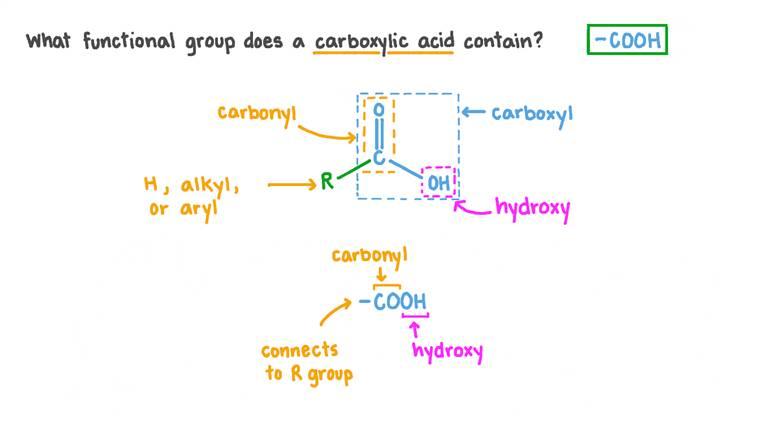 Détermination du groupe fonctionnel d'un acide carboxylique