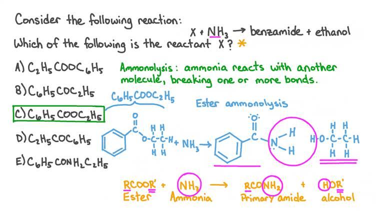 Identifier le réactif d'une réaction d'ammonolyse à partir des produits benzamide et éthanol