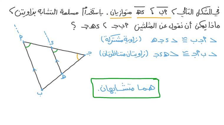 استخدام مسلمة التشابه بزاويتين لإثبات التشابه
