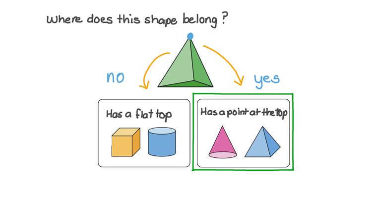 Sorting 3D Shapes into Groups