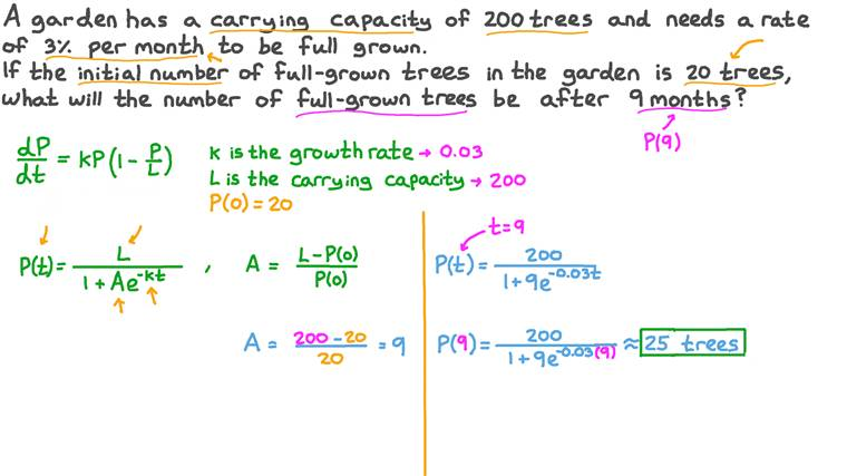 Estimating the Number of Trees in a Garden by Using a Logistic Growth Model