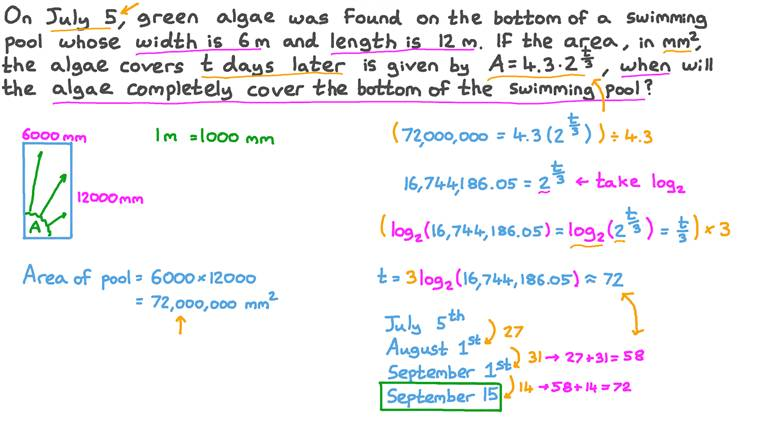 Solving a Real-World Problem Using Exponents