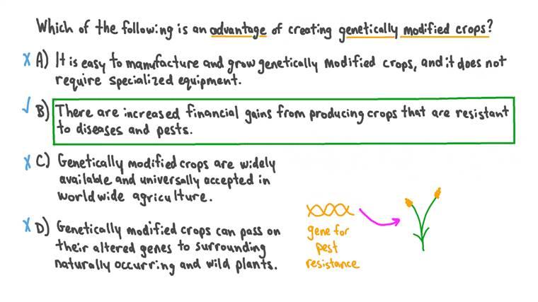 Rappel d'un avantage des cultures génétiquement modifiées