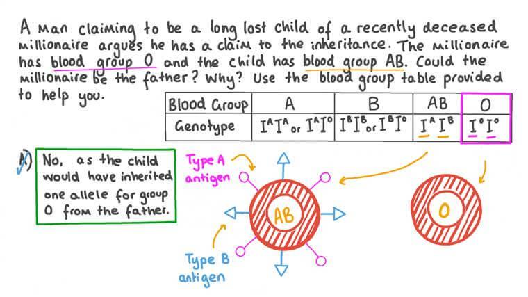 Détermination de la Paternité à partir de la Preuve du Groupe Sanguin