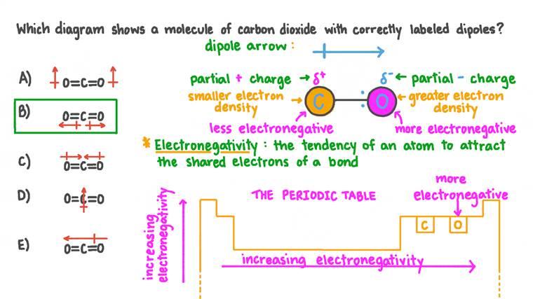 Reconnaître le diagramme du dioxyde de carbone avec des dipôles correctement marqués