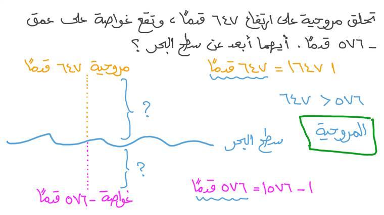 المقارنة بين القيم المطلقة للأعداد الصحيحة في سياق واقعي