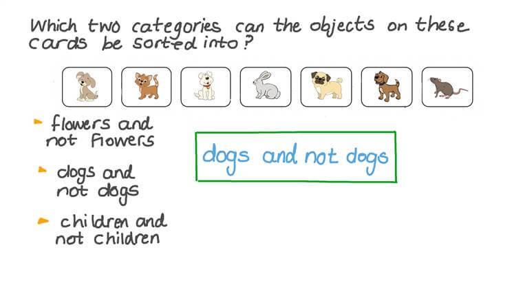Clasificar objetos en categorías dadas