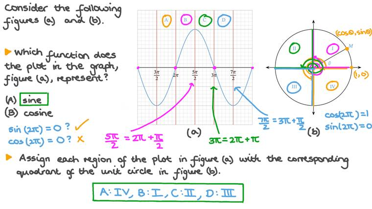 Recognizing Trigonometric Functions from Their Graphs