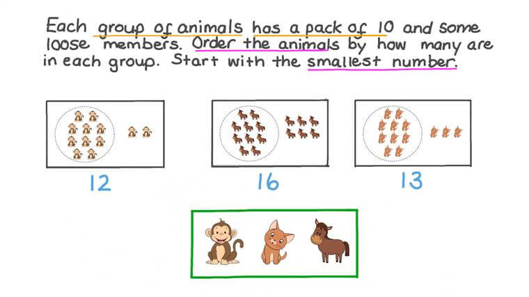 Ordering Three Groups from Smallest to Largest by Counting the Number of Objects in Each Group