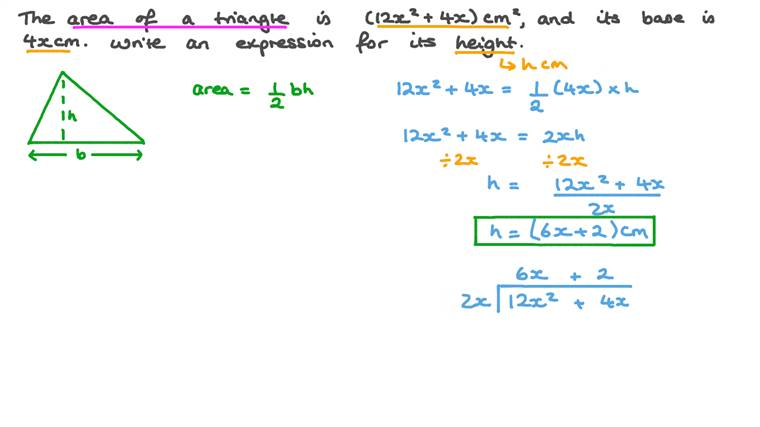 Finding the Height of a Triangle by Dividing Polynomials