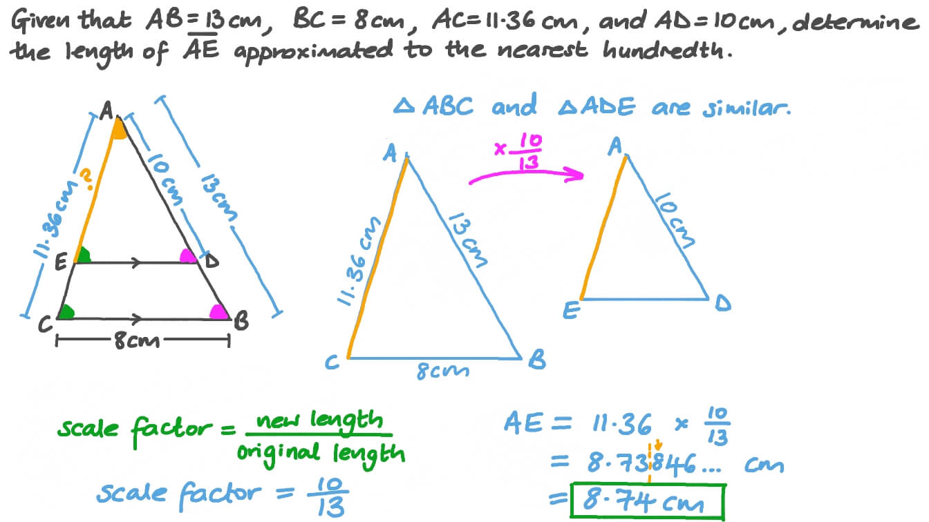 Finding the Side Length of a Triangle Using the Similarity of Triangles Regarding Proving Triangles Similar Worksheet