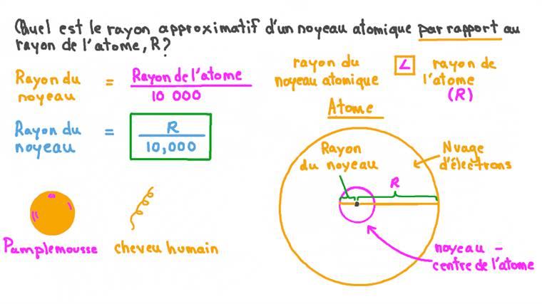 Identifier l'expression qui décrit la taille du noyau