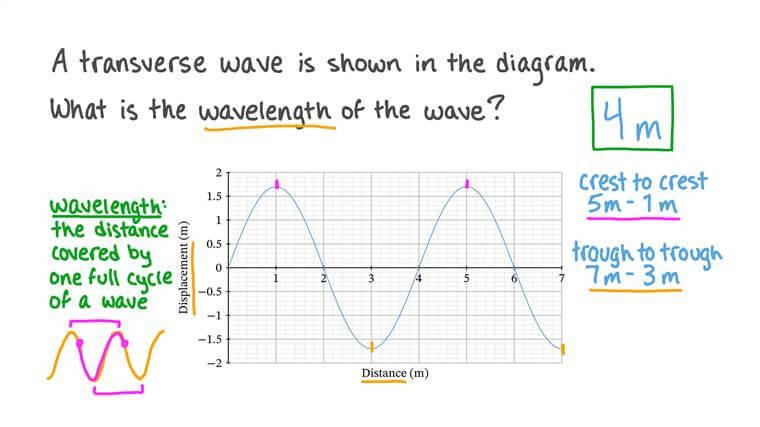 Comprendre les ondes transversales et longitudinales
