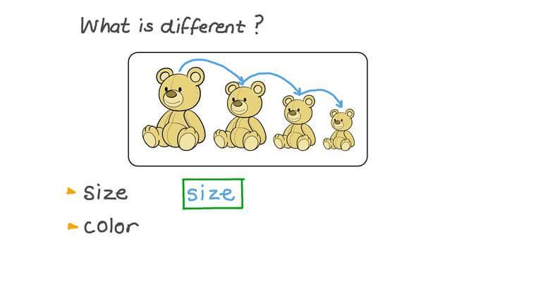 Describir propiedades medibles de objetos