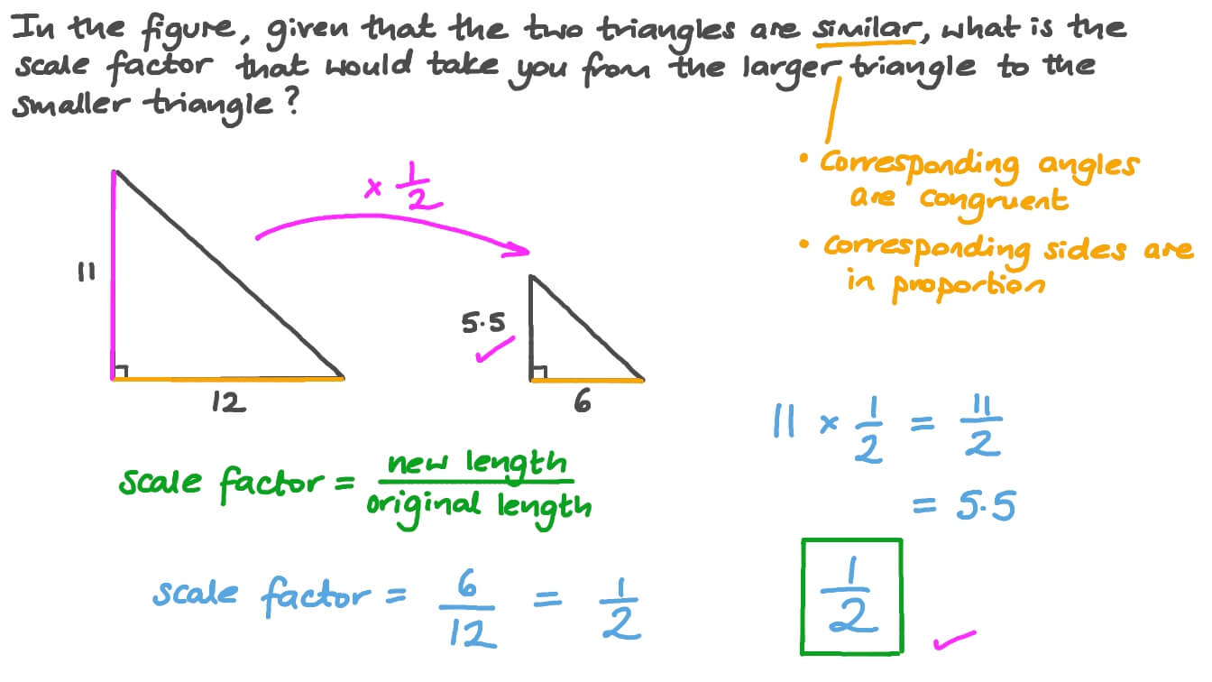 Finding the Scale Factor of Similar Triangles With Regard To Similar Figures Worksheet Answers
