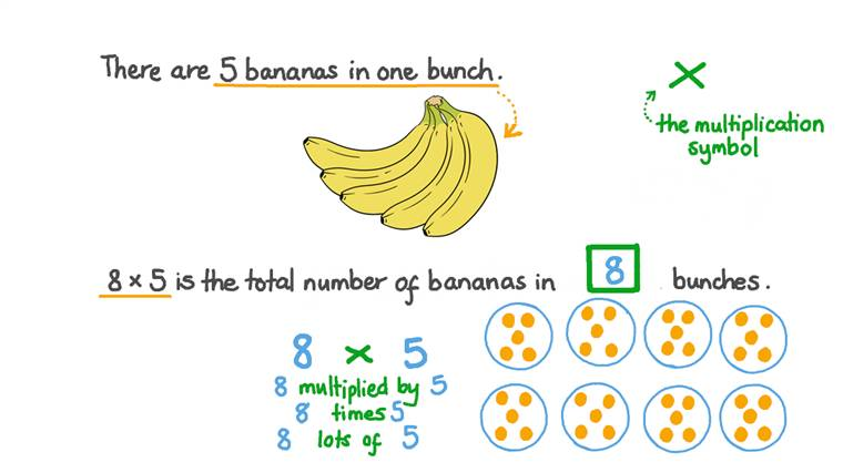 Relating Products of Whole Numbers to Equal Groups