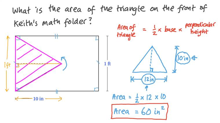 Finding the Area of a Triangle given Its Dimensions