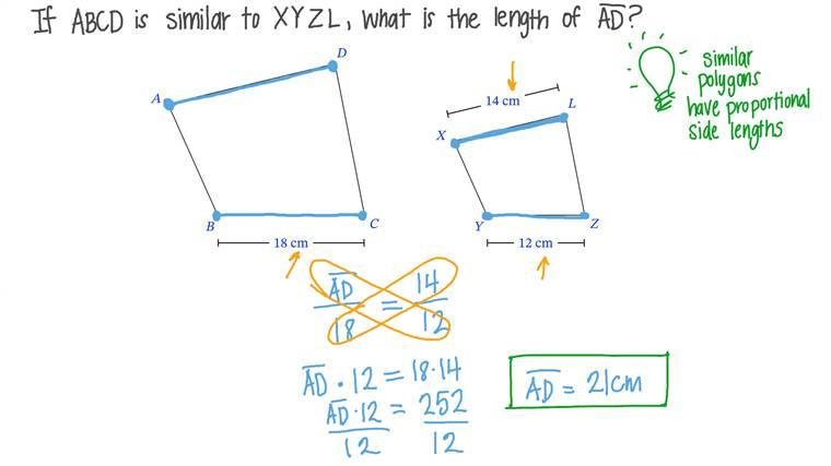 Déterminer la longueur d'un côté dans un polygone connaissant la longueur d'un côté correspondant dans un polygone semblable