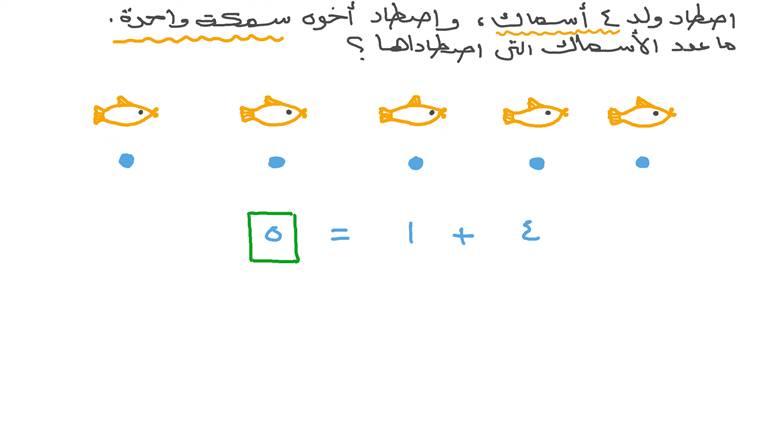 حل المسائل الكلامية التي تتضمن جمع أعداد حتى العدد تسعة