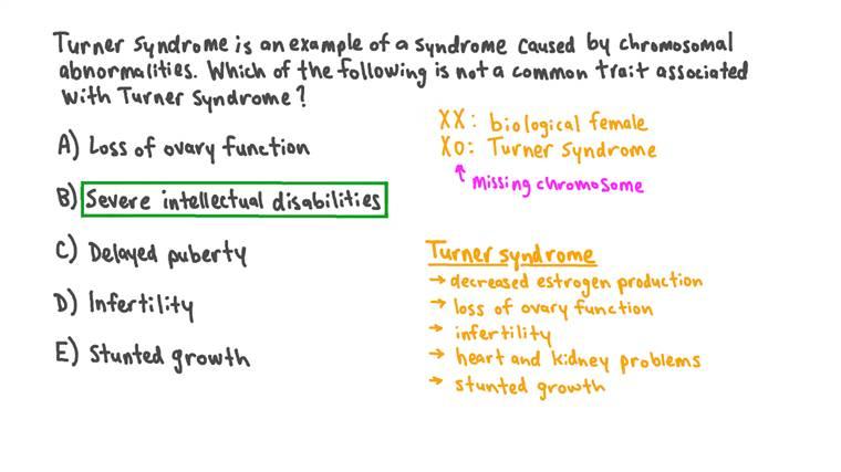 Identifier les caractéristiques associées au syndrome de Turner